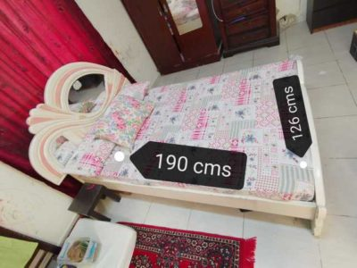 Queen size Bed with Medicated Mattress