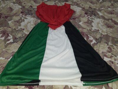 UAE Flag Design Dress