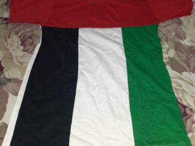 U.A.E flag design t-shirt