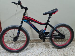 One year old cycle ,good condition, only stand mis